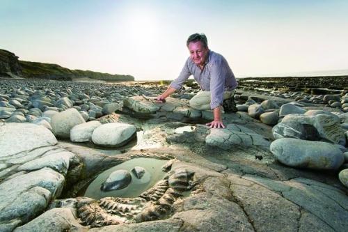 英格兰海滨重温生命进化史